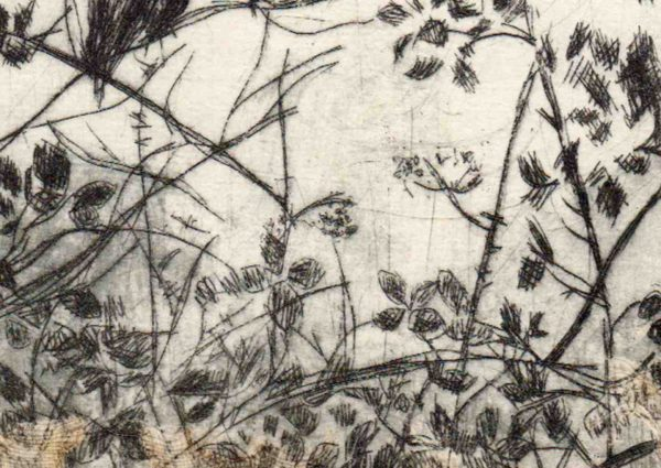Lindsey Tyson crows-with-holes-dryppoint-etching