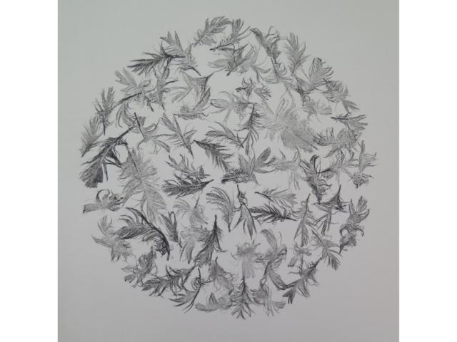 Stef Mitchell feathersphere