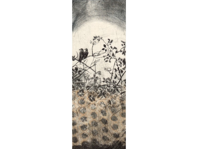Lindsey Tyson crows with holes dryppoint etching print