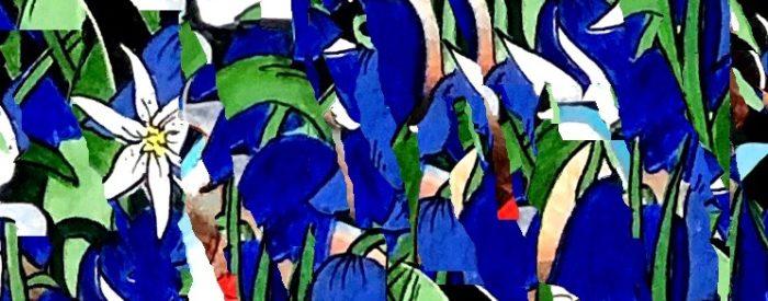 Image 6 – Roseberry Topping Kimono fabric design – C Culley